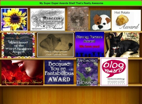 awardsshelfsuperduper1