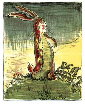 Now that I think about, guess which one of us cried more for the Velveteen Rabbit?