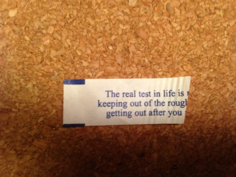Technically, it looks like it's probably about three quarters of the fortune, but three quarters is kind of long to type, so I took some poetic license and I am saying it's a half.