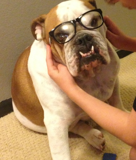 Doesn't he look like an intellectual?